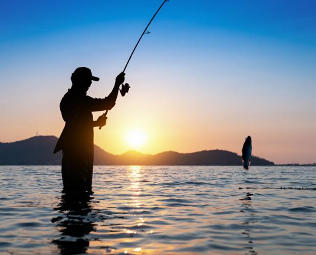 Amenities fishing